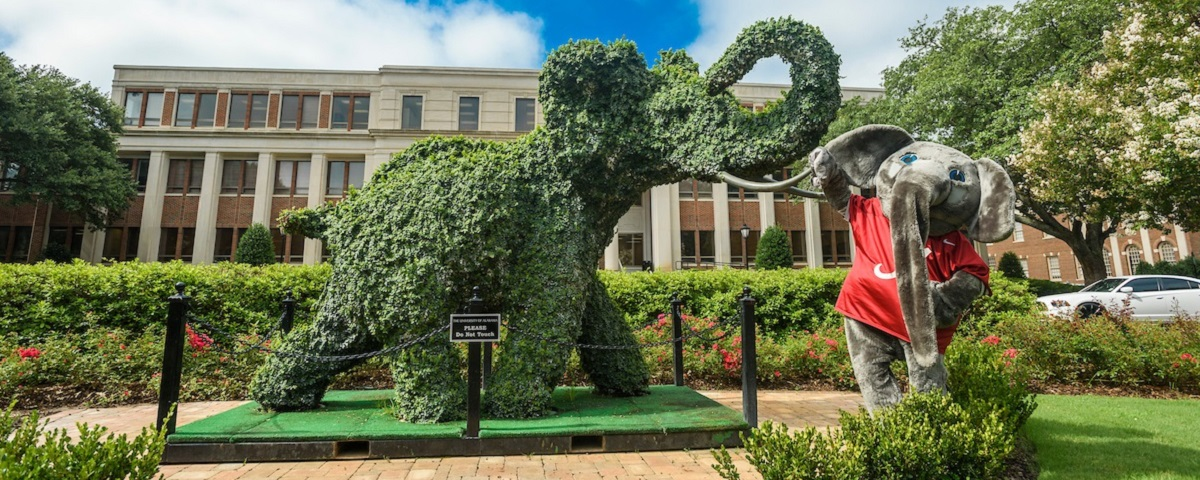 Picture perfect: Top 10 places on University of Alabama campus to snap photos
